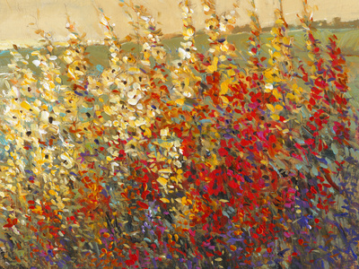 Field of Spring Flowers I Posters by Tim O'toole