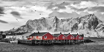 Lofoten Nähe Reine mit roten Hütten Stampe di Rolf Fischer