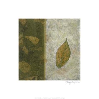 Earthen Textures XIII Limited Edition by Beverly Crawford