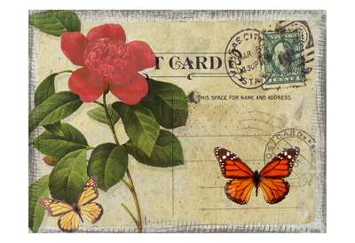 Vintage Butterfly Postcard II Posters by Taylor Greene
