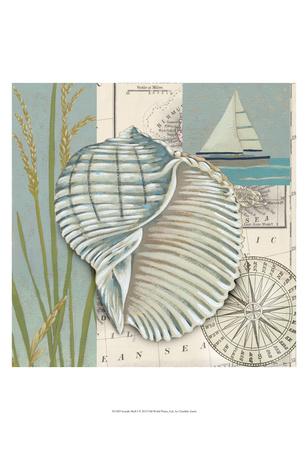 Seaside Shell I Prints by Chariklia Zarris