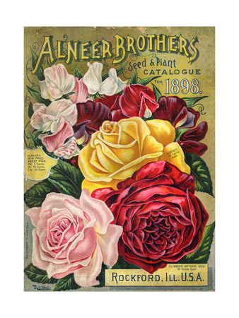 Alneer Brothers Seed and Plant Catalogue, 1898 Giclee Print