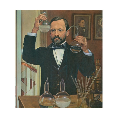 Louis Pasteur French Chemist and Microbiologist, in His Laboratory, Ca. 1880s Art