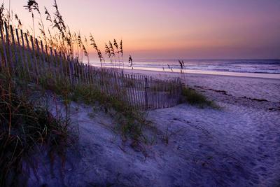 Lavender Beach I Photographic Print by Alan Hausenflock