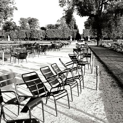 Jardin des Tuileries II Photographic Print by George Johnson