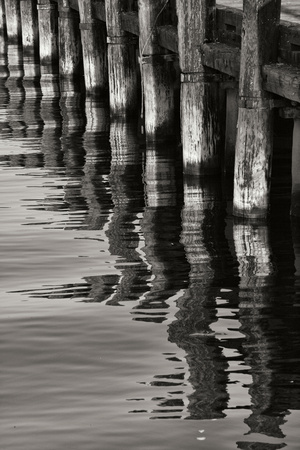 Pier Pilings 8 Photographic Print by Lee Peterson