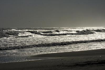 Silver Sea II Photographic Print by Alan Hausenflock