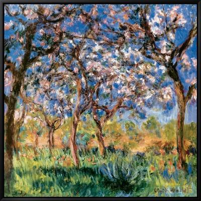 Spring in Giverny Ingelijste canvasdruk van Claude Monet