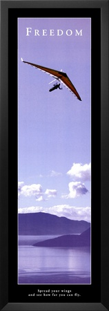 Freedom: Hang Glider Poster