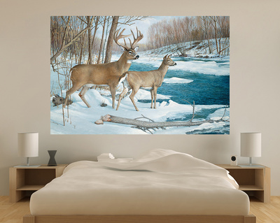 Winter Whitetail Deer (Indoor/Outdoor) Vinyl Wall Mural Wall Mural