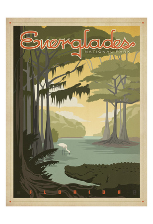 Everglades National Park Poster by  Anderson Design Group