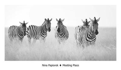 Meeting Place Posters by Nina Papiorek
