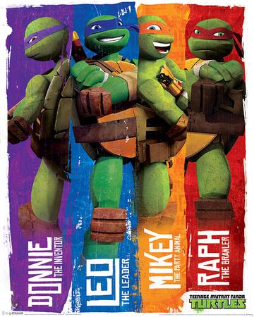 Turtles (Profiles) Posters