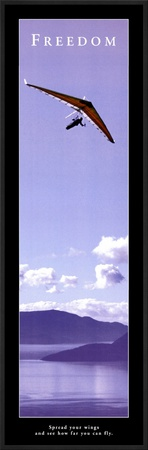 Freedom: Hang Glider Art