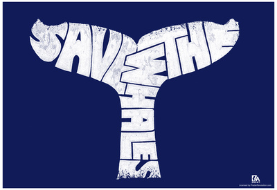 Save The Whales Fin Text Poster Photo