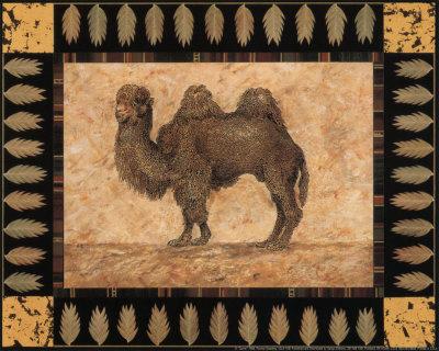 Camel Posters by Pamela Gladding
