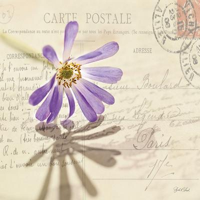 Vintage Letter and Purple Daisy Prints by Deborah Schenck