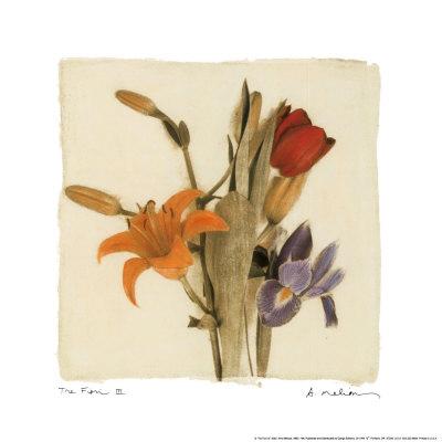 花の間III 高品質プリント : エイミー・メリオウス