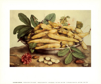 Stillleben mit gelben Bohnen Kunstdrucke von Giovanna Garzoni