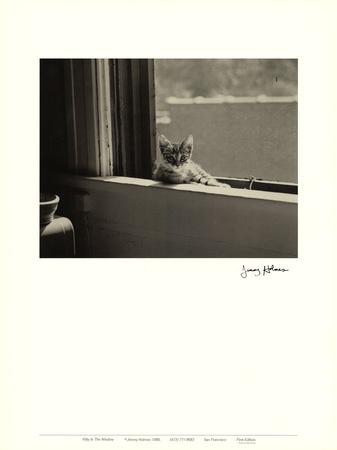 Kitty in the Window Poster di Jim Holmes