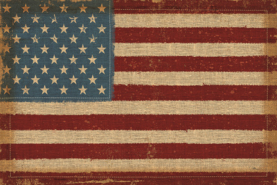 USA Strong Prints by  Pela