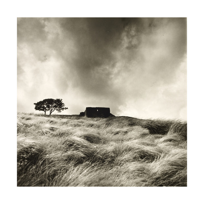 Top Withens Near Haworth, Yorkshire 1977 Giclee Print by Fay Godwin