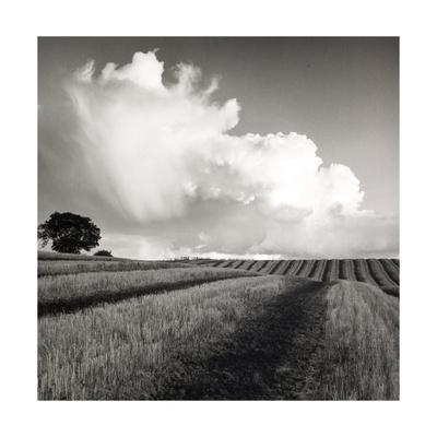 Large White Cloud Near Bilsington, Kent, 1981. Giclee Print by Fay Godwin