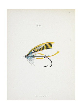 Fishing Tackle Giclee Print by Fraser Sandeman