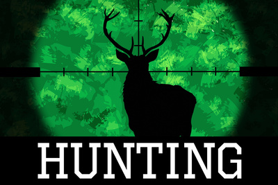 Hunting Green Buck Prints