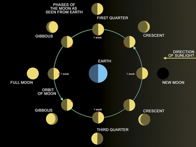 A Diagram Showing the Phases of the Earth's Moon Photographic Print by Stocktrek Images