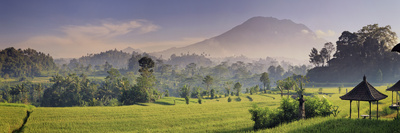 Indonesia, Bali, Sidemen, Iseh, Rice Fields and Gunung Agung Volcano Photographic Print by Michele Falzone