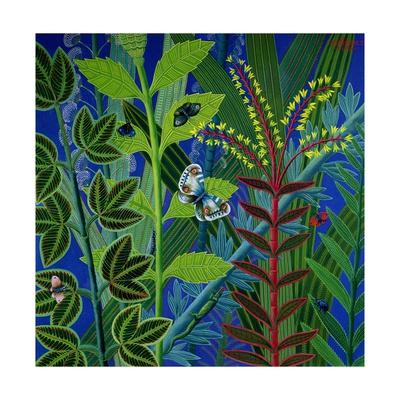 Vegetation Giclee Print by Tamas Galambos
