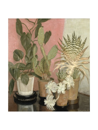 Cacti Giclee Print by Leonard Campbell Taylor