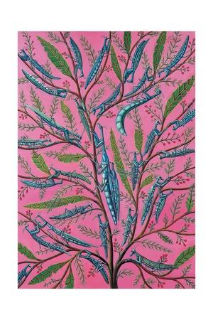 Praying Mantis, 1995 Giclee Print by Tamas Galambos