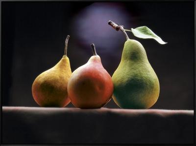 Three Pears Framed Canvas Print by  ATU Studios