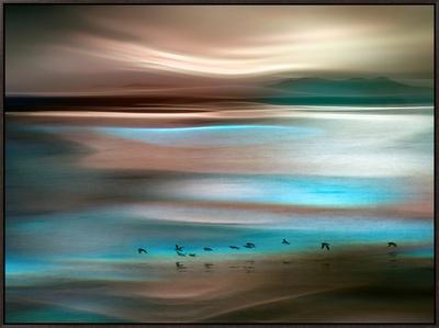 Migrations Framed Canvas Print by Ursula Abresch