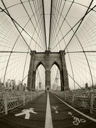 New York City, Manhattan, Brooklyn Bridge at Dawn, USA Lámina en metal