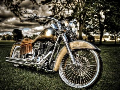 Harley Metal Üzerine Reprodüksiyon