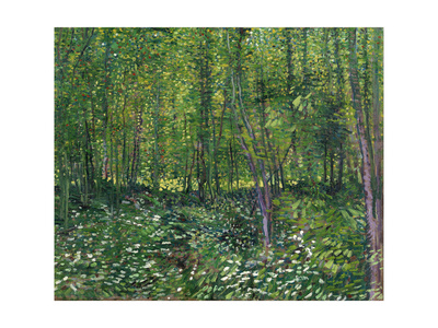 Trees and Undergrowth, c.1887 Posters av Vincent van Gogh