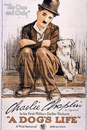 A Dog's Life Movie Charlie Chaplin Poster