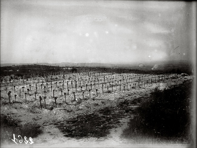The French Cemetery at Plateau de Californie, Craonne, 1917 Photographic Print by Jacques Moreau