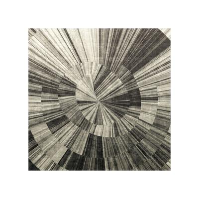 Silver Swirl Giclee Print by Mali Nave