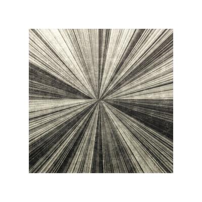 Silver Burst Giclee Print by Mali Nave
