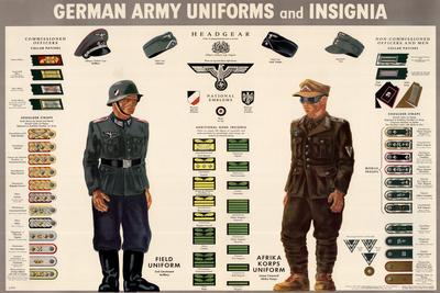 German Army Uniforms and Insignia Chart WWII War Propaganda Print Plastic Sign Plastic Sign