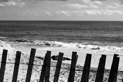 Beach Dunes Fence in Hamptons Black White Plastic Sign Plastic Sign