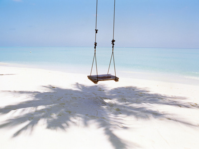 Beach Swing And Shadow of Palm Tree on Sand Photographic Print by Green Light Collection