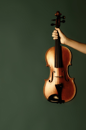 Violin In Her Hand Photographic Print by Ricardo Demurez