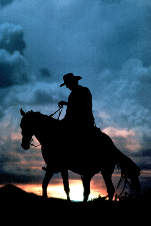 Cowboy Silhouette in Sunset Print Plastic Sign Plastic Sign