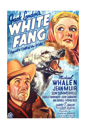 WHITE FANG Posters