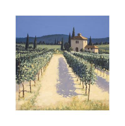 Vineyard Shadows Giclee Print by David Short